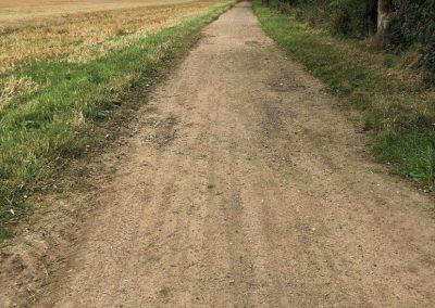 Whitton Health Walk