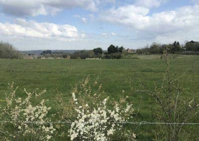 Whitton Fields